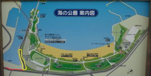 海の公園 柴口駐車場 繁忙期