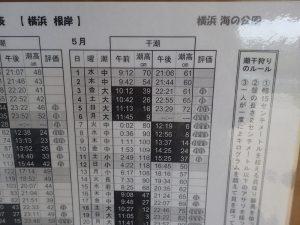 海の公園 潮干狩りカレンダー