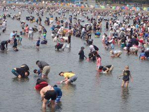 海の公園 潮干狩り 苦労する場所
