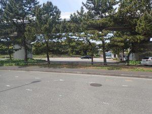 海の公園 柴口駐車場内 臨時