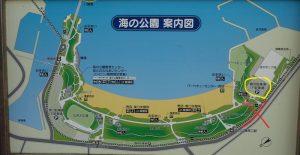 海の公園 磯浜駐車場 案内図