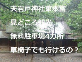 天岩戸神社東本宮!見どころ観光!無料駐車場4カ所!車椅子でも行けるの?