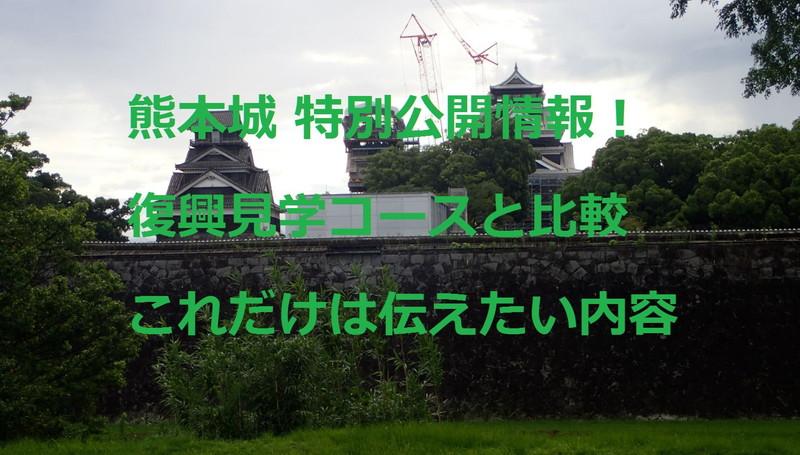熊本城:特別公開情報!復興見学と比較!コレだけは伝えたい内容です