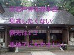 天岩戸神社西本宮:見逃したくない観光は1つ!車椅子にもやさしい神社だった