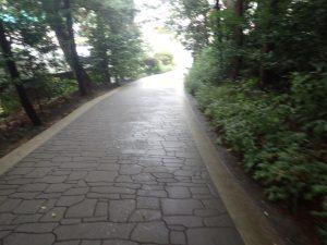 高千穂神社:ベビーカー・車椅子の参拝順路コース