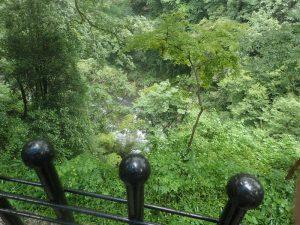 天岩戸神社西本宮:岩戸川