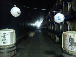 トンネルの駅:見どころと貯蔵庫見学