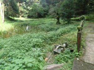 草部吉野神社:大蛇の石像、不老長寿の水、吉ノ池