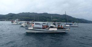 シークルーズとイルカウォッチング船
