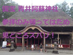 青井阿蘇神社(国宝)参拝で帰ったてはだめ、見どころズバリ紹介!