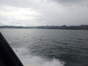 シークルーズ出航:イルカクルージング