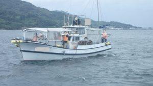 シークルーズ:イルカウォッチング、船選び