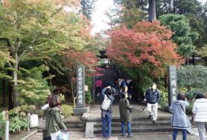 円覚寺:紅葉ポイント
