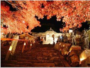 大山寺紅葉ライトアップ:参道下からの撮影