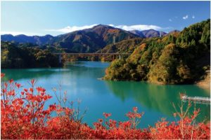 宮ヶ瀬ダム:鳥居原公園