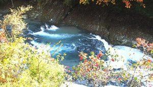 中川温泉ぶなの湯周辺の木々、紅葉