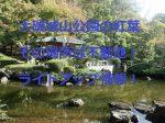 県立大磯城山公園の紅葉:不動池!ライトアップ情報