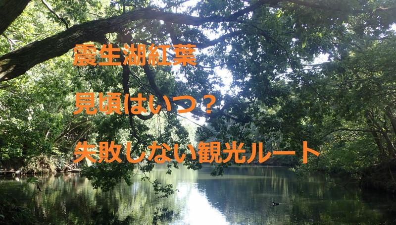震生湖紅葉:見頃はいつ?失敗しない観光ルート