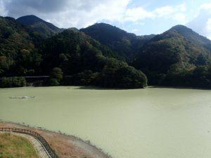 丹沢湖の湖面