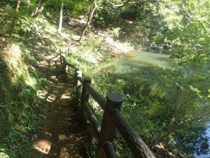 震生湖:湖畔の遊歩道