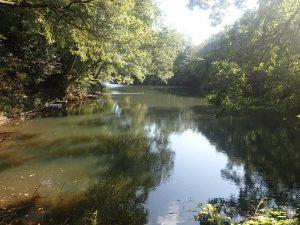 震生湖:湖畔の遊歩道から撮影