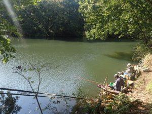 震生湖:ヘラブナ釣り