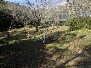 震生湖公園:遊ぶ