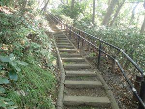 大磯城山公園:みもじ広場から展望台への階段
