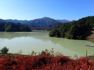 宮ヶ瀬ダム:鳥居原園 岬の展望台