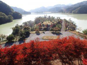 宮ヶ瀬ダム:鳥居原園湖畔庭園から花時計や岬展望台