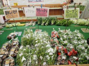 宮ヶ瀬湖:ふれあい館 野菜直売