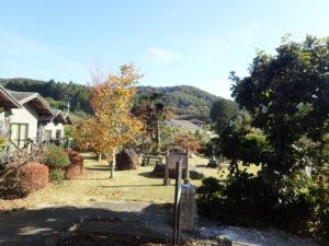 七沢荘:元気の広場眺め