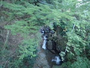 大山寺までの行き方:紅葉