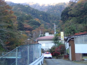 大山寺までの歩きルート:モミジ
