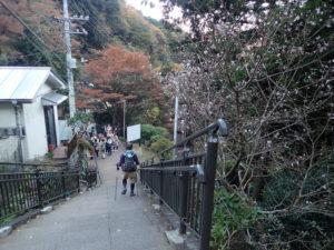 大山寺の紅葉:女坂から行くルート