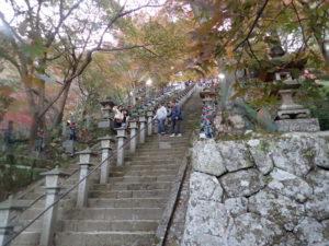 大山寺の紅葉:参道したからお勧め撮影ポイント