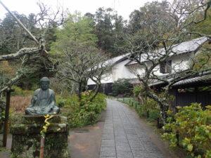 東慶寺:大イチョウと黄葉の撮影ポイント