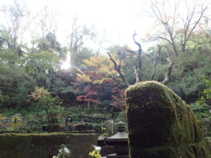 東慶寺の紅葉:墓苑