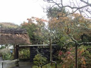 東慶寺の紅葉:山門