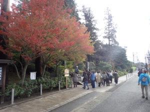 円覚寺:総門前の紅葉