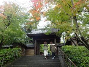 円覚寺:総門とモミジ