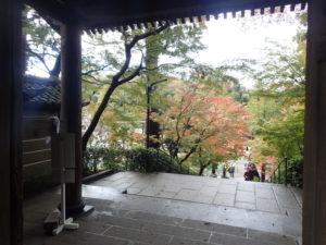 円覚寺:紅葉と総門