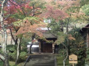 円覚寺:居士林 紅葉撮影スポット