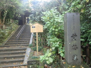 円覚寺:黄梅院とモミジ
