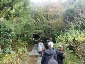 円覚寺:黄梅院と紅葉