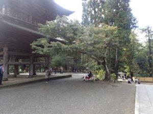 円覚寺:山門と紅葉とベンチ