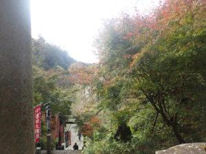 建長寺:半僧坊までの紅葉