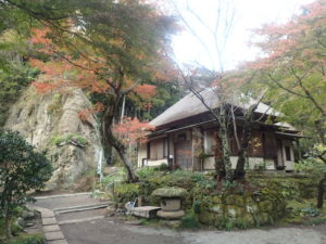 浄智寺:お茶室とモミジと山肌