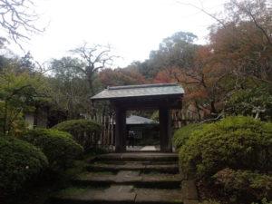 浄智寺:棟門とモミジ 紅葉
