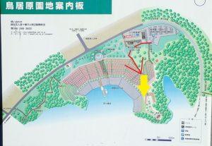 宮ヶ瀬ダム:鳥居原園内撮影方向